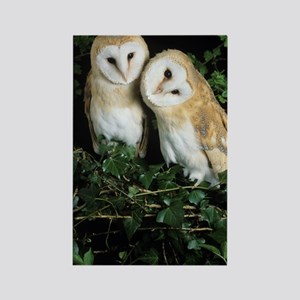 Barn owls Rectangle Magnet
